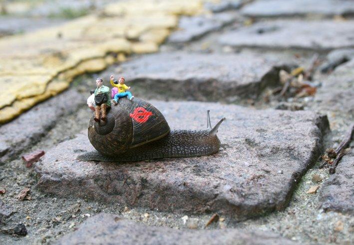 snail bus 1 - blog[1]