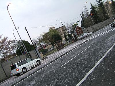 画像 053