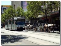 馬車とトラム-2-