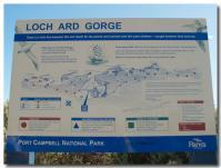 Loch Ard Gorge-1-