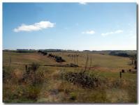牧場地帯-2-