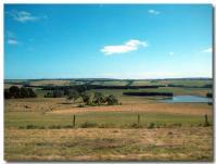 車窓からの牧場地帯-1-