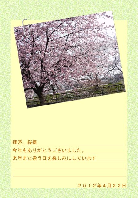 また逢う日の桜