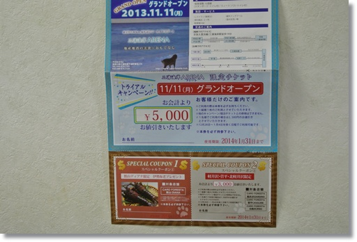 048a_20131123191242e00.jpg