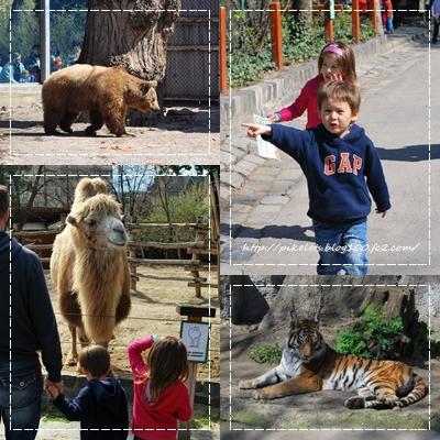 Budapest Zoo 3