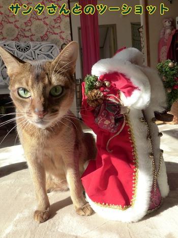 ああ!サンタさん・・!