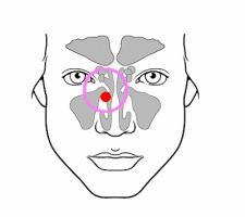 頭頸腫瘍位置