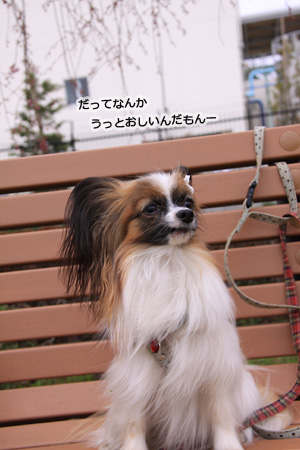 IMG_ma5650.jpg