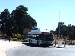LAS096バス