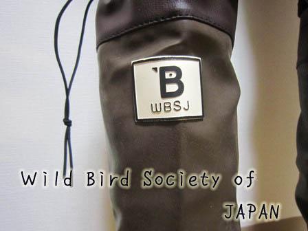 WBSJ.jpg