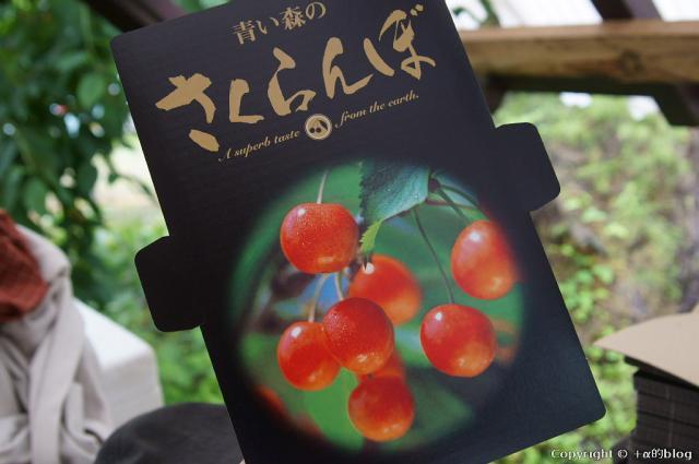 cherry13-15_eip.jpg