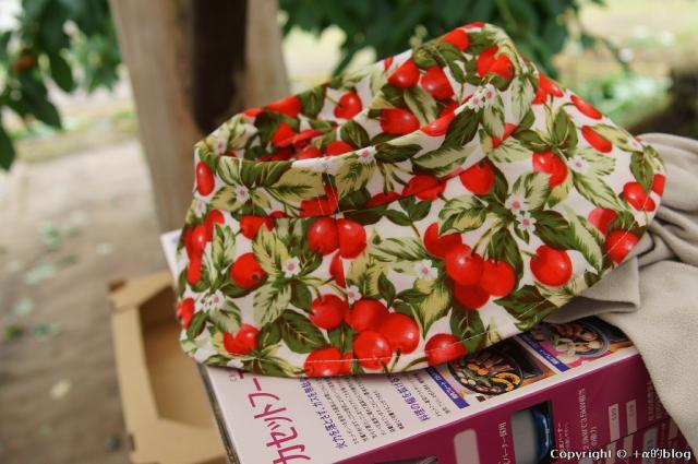 cherry13-25_eip.jpg