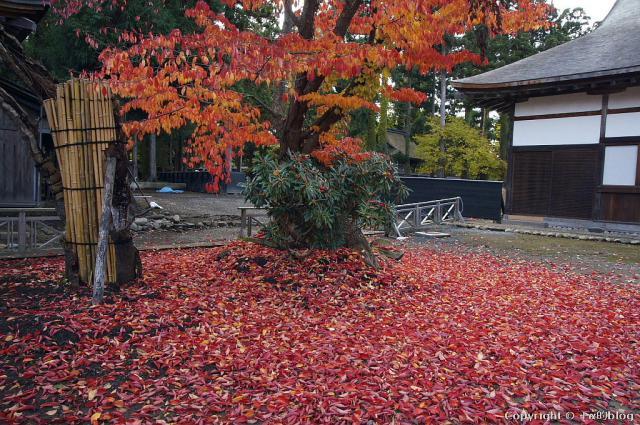 choushouji12-03_eip.jpg