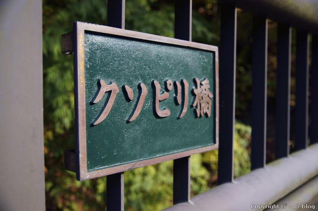 shimo12aki29_eip.jpg