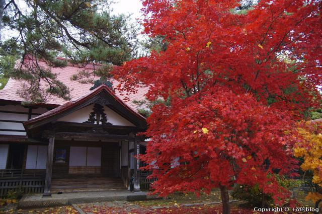 soutokuji12L_eip.jpg
