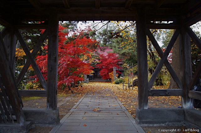 soutokuji12a_eip.jpg