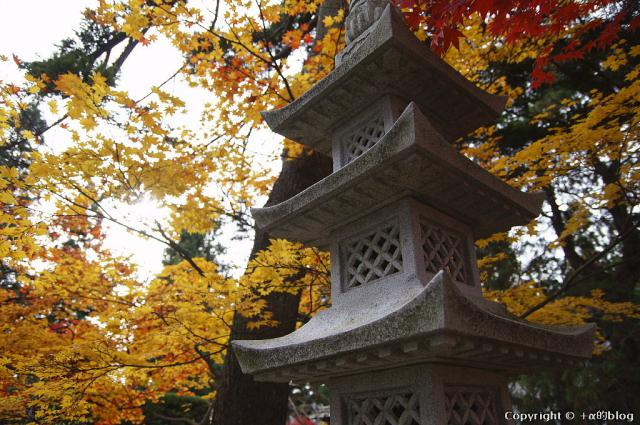 soutokuji12h_eip.jpg