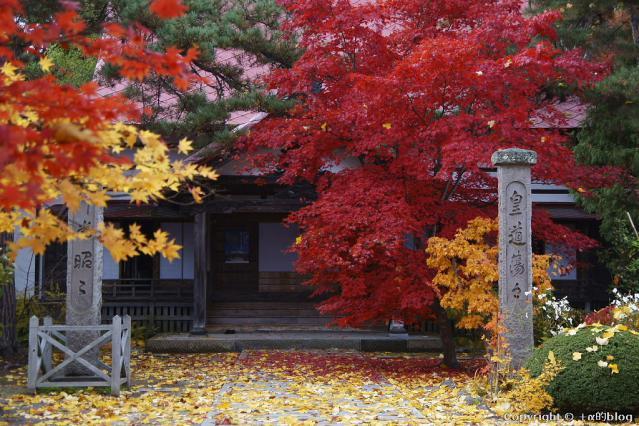 soutokuji12mm_eip.jpg
