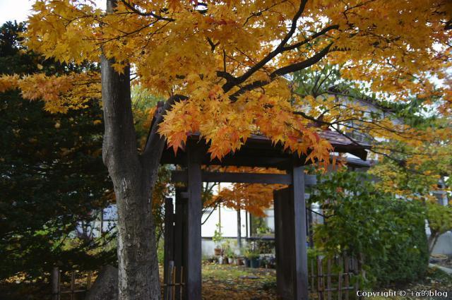 soutokuji12n_eip.jpg