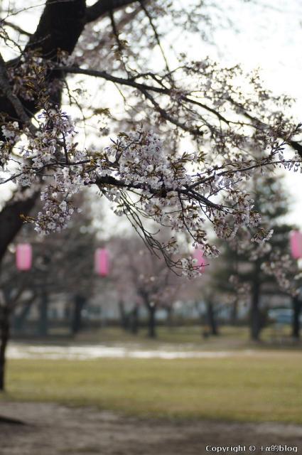 spring1305c_eip.jpg