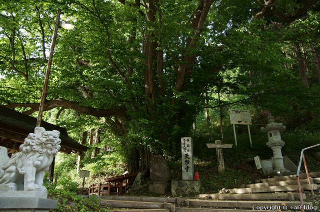 tendaiji12-39a_eip.jpg
