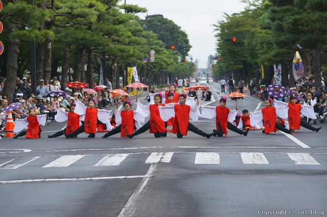 yosakoi1210-200_eip.jpg