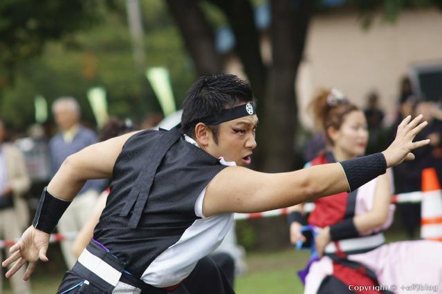 yosakoi1210-99_eip.jpg