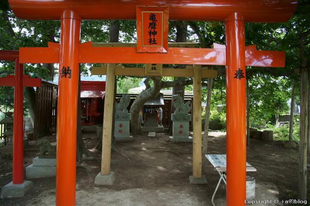 zashikiwarashi12g_eip.jpg