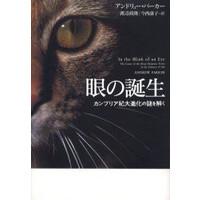papermoon_bookm1.jpg