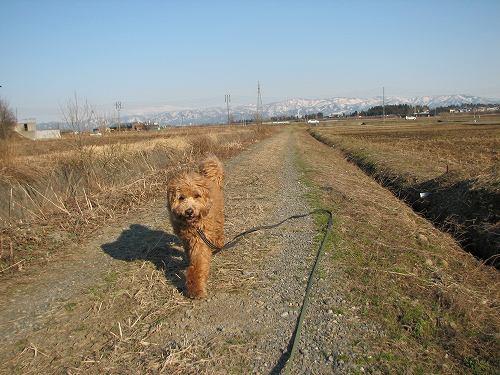 2011.4.5康介