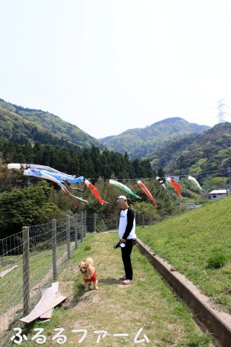 2010.5.4 maizuru 0000