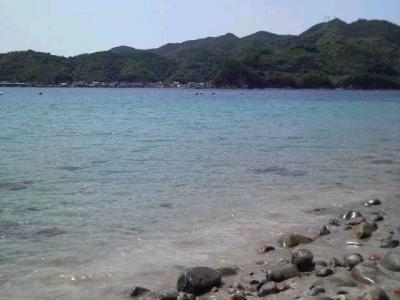海2010春