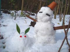 2011雪ウサギ