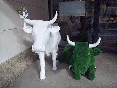 丸の内カフェの牛11020101