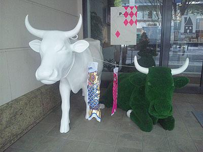 丸の内カフェの牛110422