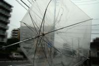 傘ぐんにゃり