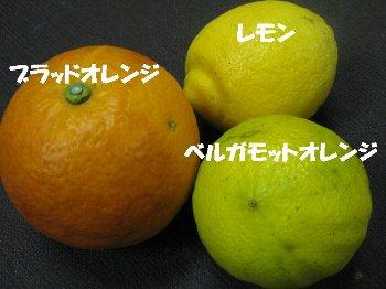 orennji_20100330013144.jpg