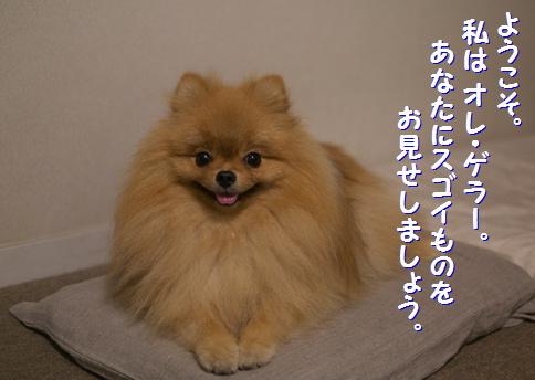 blog俺パワー1
