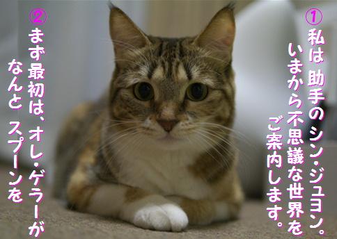 blog俺パワー2