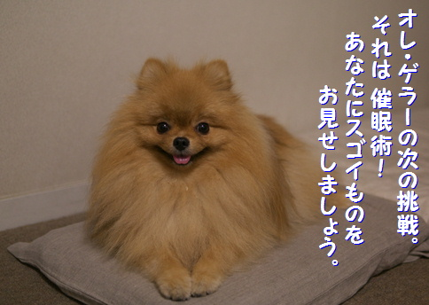 blog俺パワー5
