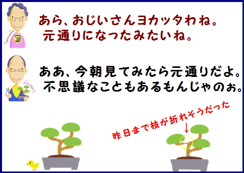 blog-ws1-2.jpg