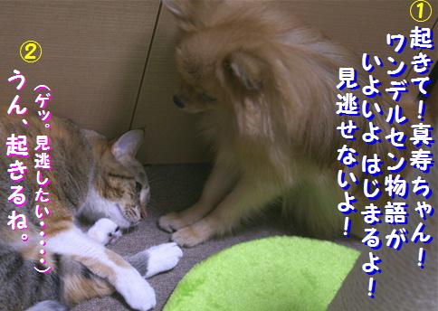 blog-ws1-s1.jpg