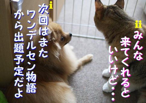blogquiz1-10.jpg