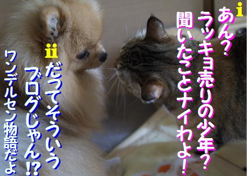 blogquiz1-5a.jpg