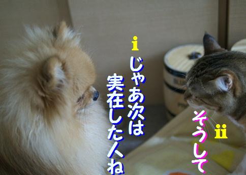 blogquiz1-6.jpg