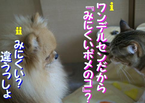 blogquiz2-3.jpg
