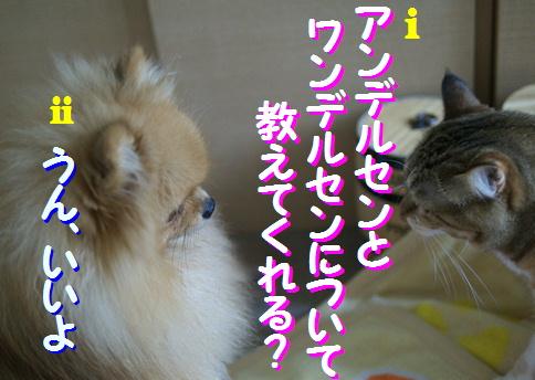 blogquiz2-5.jpg
