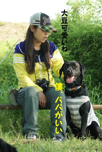 12_20100503221240.jpg