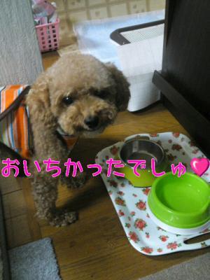 moblog_8c5782b7.jpg