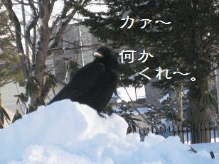 2010_1227_125647-IMG_3056.jpg